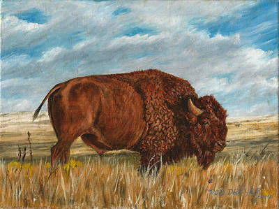 Bison Painting - Study Of An American Bison by Dreyer Wildlife Print Collections