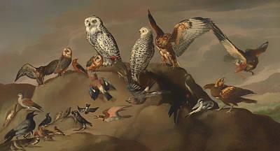 Study Of Birds Art Print by Mountain Dreams