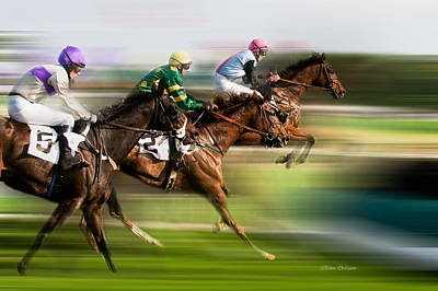 Horses Photograph - Study Of Motion by Jillian  Chilson
