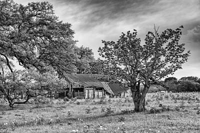 Study Of Rural Life In Smithville Texas Art Print