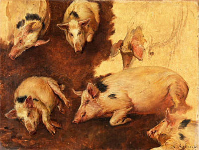 Of Pig Painting - Study Of Six Pigs by Anders Askevold