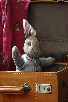 Stuffed Bunny In A Suitcase Art Print