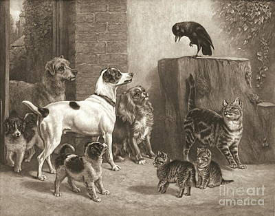 Stump Orator 1881 Art Print