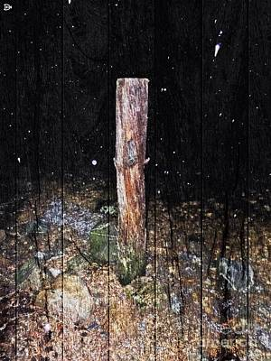 Photograph - Stumped by Andy Heavens