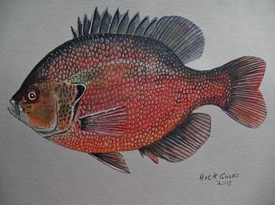 Panfish Painting - Stumpknocker by Richard Goohs
