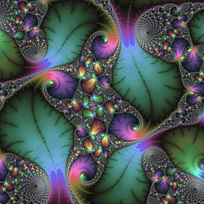 Florals Royalty-Free and Rights-Managed Images - Stunning mandelbrot fractal by Matthias Hauser