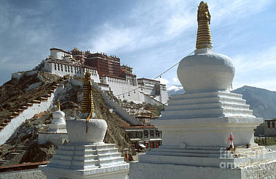 Photograph - Stupas And Potala Palace - Tibet by Craig Lovell