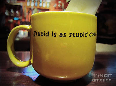 Photograph - Stupid Is... by Marguerita Tan