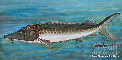 Folkartanna Painting - Sturgeon by Anna Folkartanna Maciejewska-Dyba
