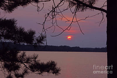 Sturgeon Lake Mn Sunset Art Print