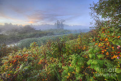 Sturgeon Photograph - Sturgeon River Valley Autumn Morning by Dan Jurak
