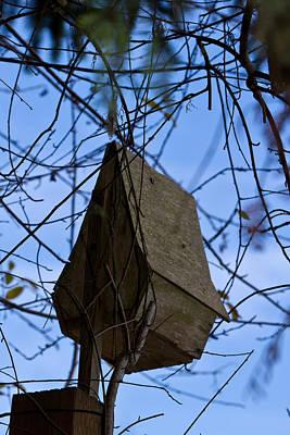 Photograph - Stylish Birdhouse - Birds by Marie Jamieson