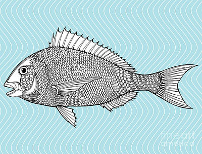 Ocean Digital Art - Stylized Fish. Sea Fish. Dorado. Black by In Art