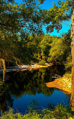 Photograph - Suwannee River Banks by Jeff Kurtz