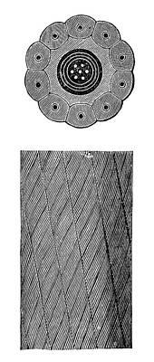 Submarine Telegraph Cable Art Print