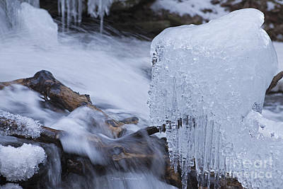 Photograph - Submerged Logs With Clump Of Icicles by John Stephens