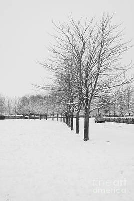 Photograph - Suburban Snow by Jeremy Hayden