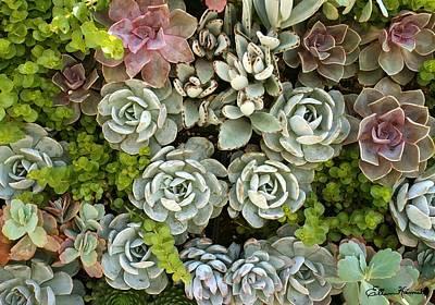 Painting - Succulent Garden 1 by Ellen Henneke