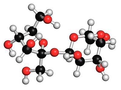 Sucrose Sugar Molecule Art Print