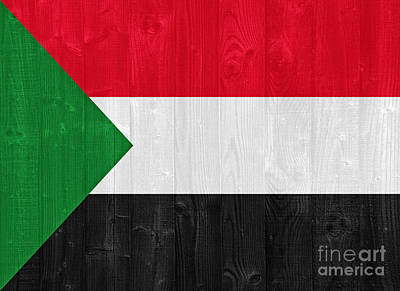 Sudan Red Photograph - Sudan Flag by Luis Alvarenga