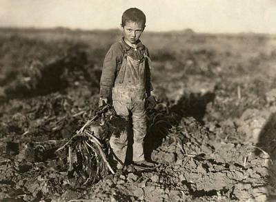 Sugar Beet Worker, 1915 Print by Granger
