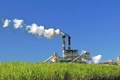 Agricultural Industry Wall Art - Photograph - Sugar Cane Factory by Bildagentur-online/mcphoto-schulz