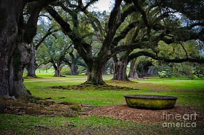 Photograph - Sugar Cane Vat At Oak Alley Plantation by Kathleen K Parker