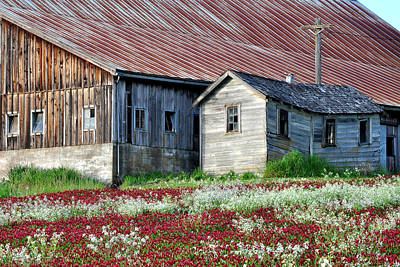 Photograph - Sugar Shack by Everett Bowers