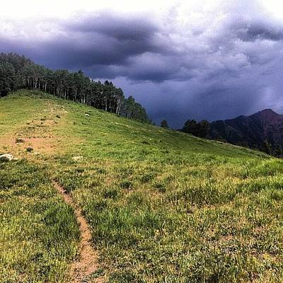 Mtb Photograph - #sugarbowl Lap. The Super Fun Meadow by Andrew Wilz