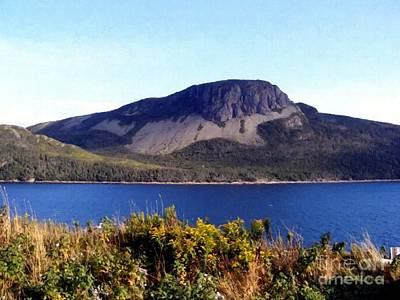 Art Print featuring the painting Sugarloaf Hill In Summer by Barbara Griffin