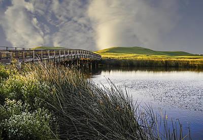 Phil Clark Photograph - Suisun Marsh by Phil Clark