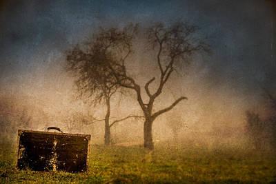 Suitcase 02 Original by Mihai Ilie