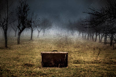 Suitcase 03 Original by Mihai Ilie