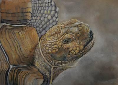Sulcata Art Print by Jean Cormier