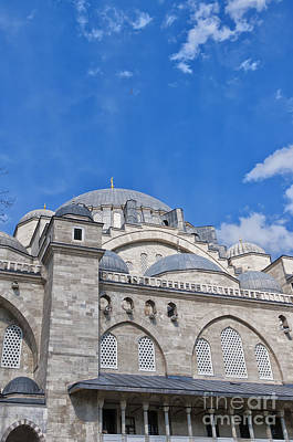 Lovely Lavender - Suleiman Mosque 11 by Antony McAulay