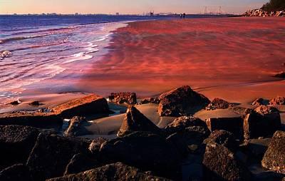 Photograph - Sullivan's Island Sc 2 by Bob Pardue