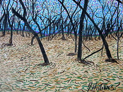 Sully's Hill Art Print by Josh  Williams