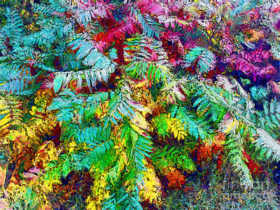 Photograph - Sumac Splendour by Claire Bull