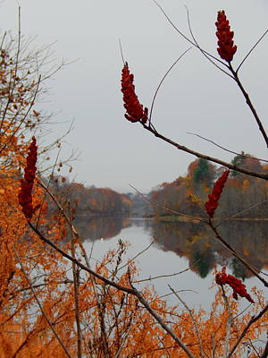 Photograph - Sumak Rivermirror by Expressionistart studio Priscilla Batzell