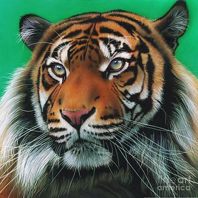 Sumatran Tiger Original