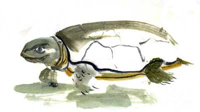 Zazen Painting - Sumi-e Turtle by Ellen Miffitt