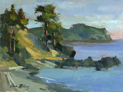 San Juan Painting - Summer At Lopez Island by Diane McClary