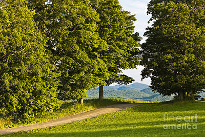 Photograph - Summer Backroad View by Alan L Graham