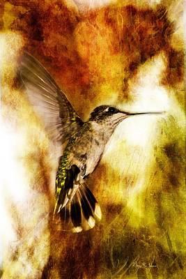 Hummingbird - In Flight - Summer Beauty Art Print by Barry Jones