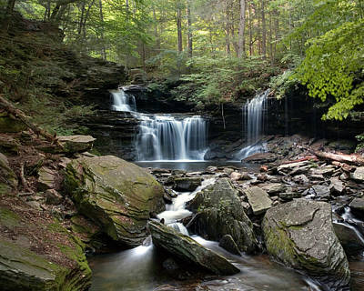 Summer Breeze At R B Ricketts Falls Art Print
