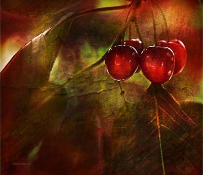 Fruit Photograph - Summer Cherries 2 by Theresa Tahara