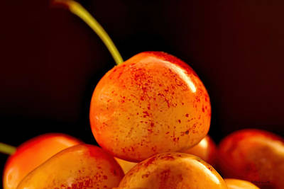 Photograph - Summer Cherries by Bellesouth Studio