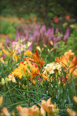 Photograph - Summer Colors Engaged by Susan Herber