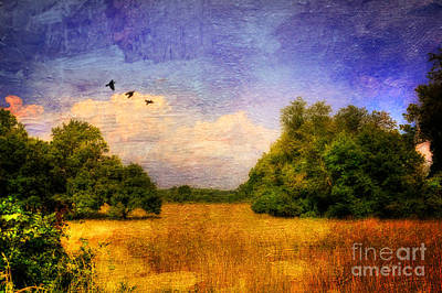 Summer Country Landscape Art Print by Lois Bryan