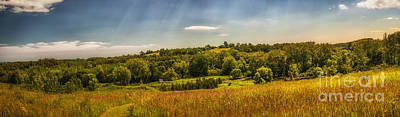 Meadow Photograph - Summer Countryside by Elena Elisseeva